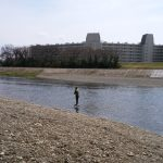 多摩川のマルタウグイに行ってみた。2017年4月2日【1回戦】