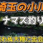 2021年4月上旬のナマズ(鯰)釣り日記 2